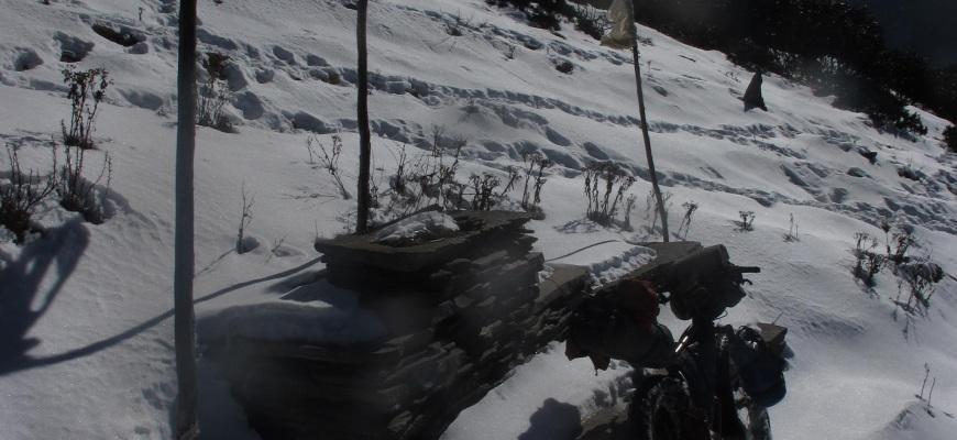 snowrest